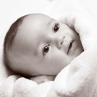 Newborn Studio Portrait Session image