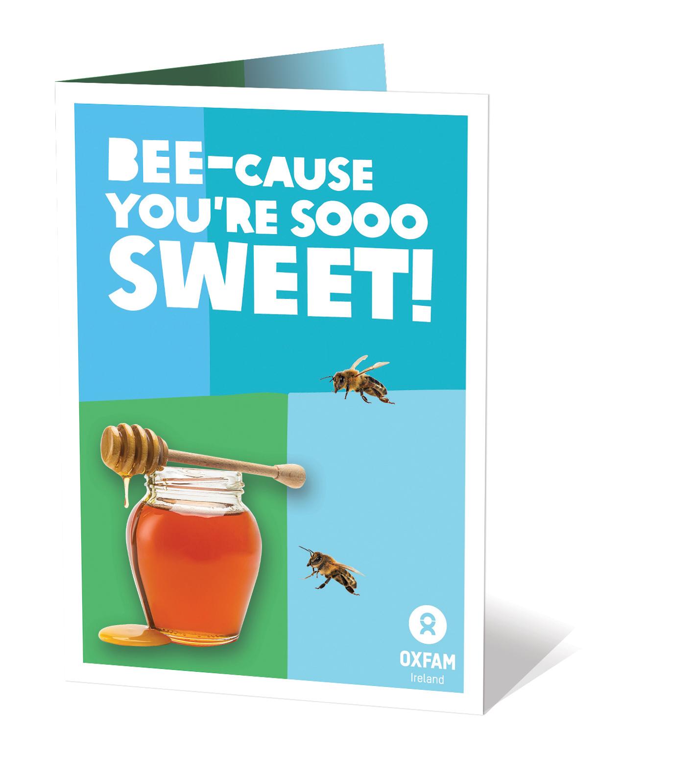 Oxfam Honeybees Gift