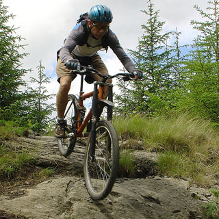 1 Day Mountain Biking image