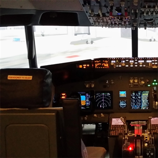 737 Flight Simulator Experience - 60 Minute image