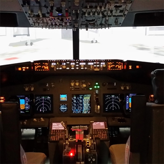 737 Simulator Flying Experience image