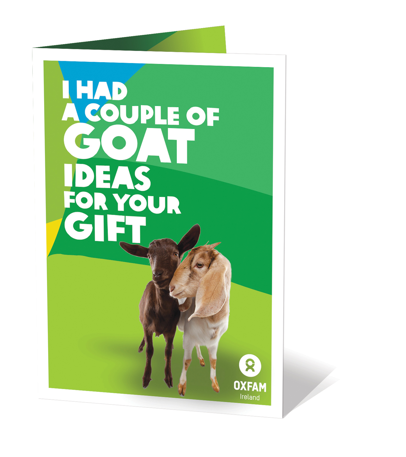 Oxfam Gift of 2 Goats