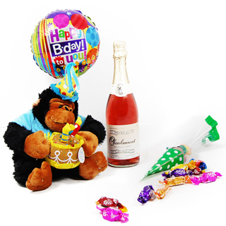 Bubbles and Cuddles Birthday Hamper image
