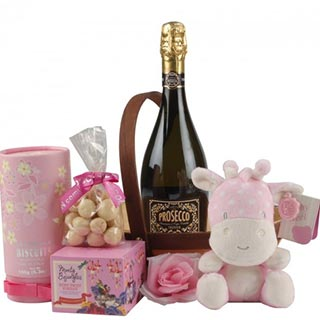 New Baby Girl Gift Hamper image