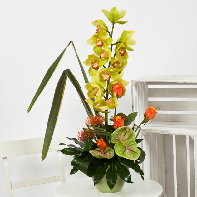 Orchid Flower Arrangement image