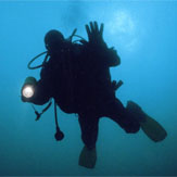 Scuba Qualifications