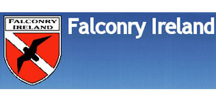 Falconry Ireland image