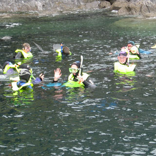 Family Half Day Snorkelling Gear Rental image