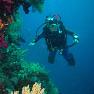 Scuba Diver 3-Week Beginners Course for 2 People