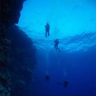 Open Water - 6-Week PADI Scuba Course for 2 People