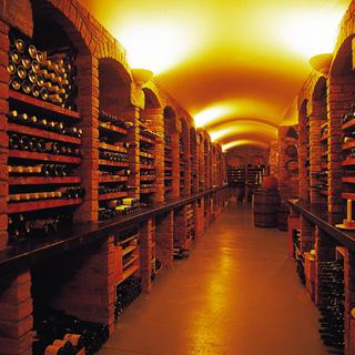 Wine Cellar Tour