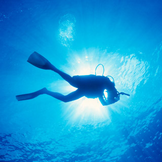 Discover Scuba Diving - Introductory Lesson image
