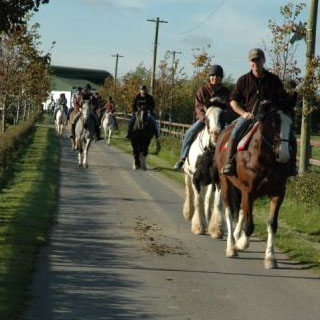 Horse Riding through Kildare Countryside image