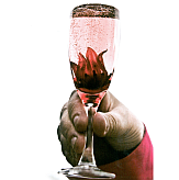 Fizz and Flowers