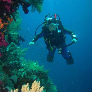 €150 Ocean Divers Gift Voucher image